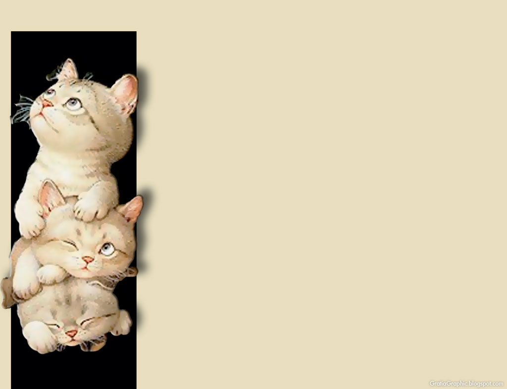 Funny And Cute Cat Pictures 21 Background: Gratia Graphic: Cute Cats Background