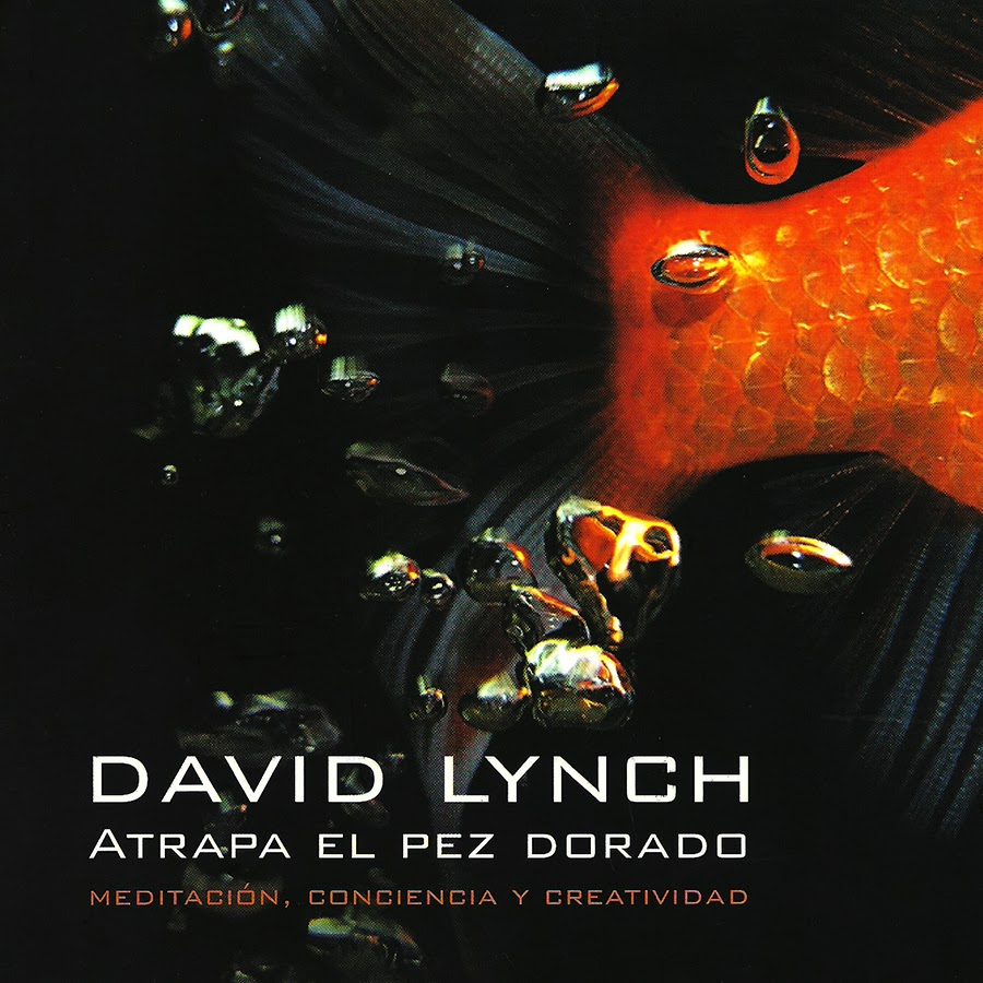 Libro Atrapa el pez dorado