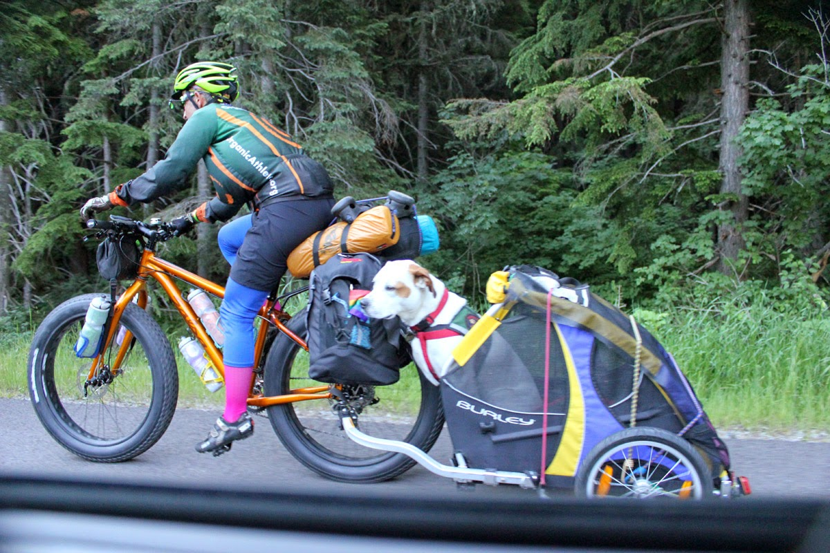 Bikepacker in Glacier National Park
