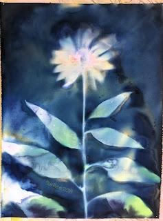 Wet cyanotype_Sue Reno_Image 423