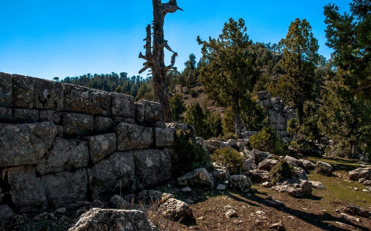 Ελ Ντοράντο λόφοι που χρονολογούνται ραντεβού με μια ομάδα μάγμα μέλος