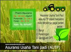 Asuransi Usaha Tani padi (AUTP) memberi perlindungan kepada petani