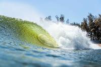 freshwater pro wave3164FWP19cestari