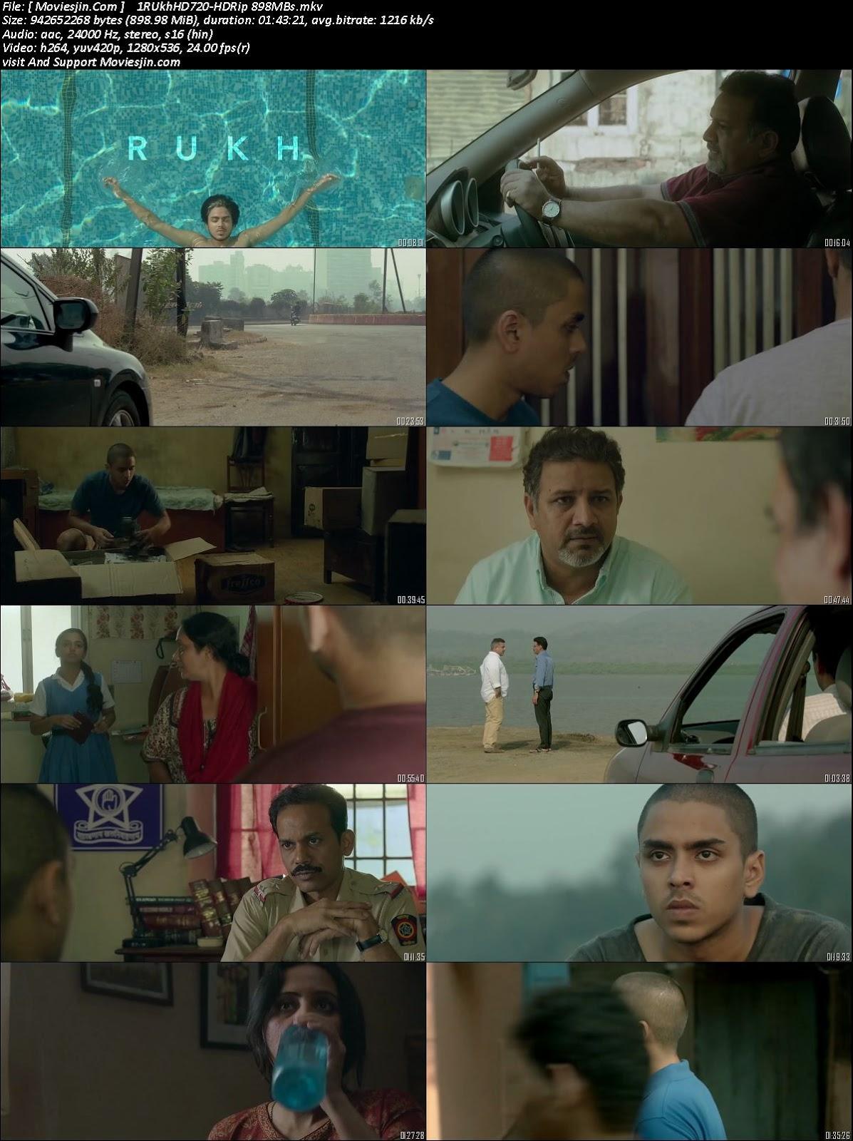 Watch Online Rukh 2017 HDRip 900MB Full Hindi Movie 720p ESub Full Movie Download Khatrimaza, free download 9xmovies,