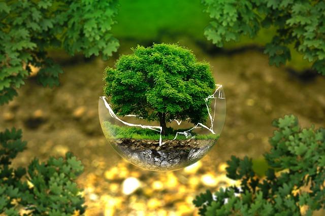 Ekologi dan Ekosistem