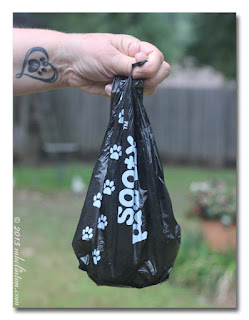 hand holding dog poop bag