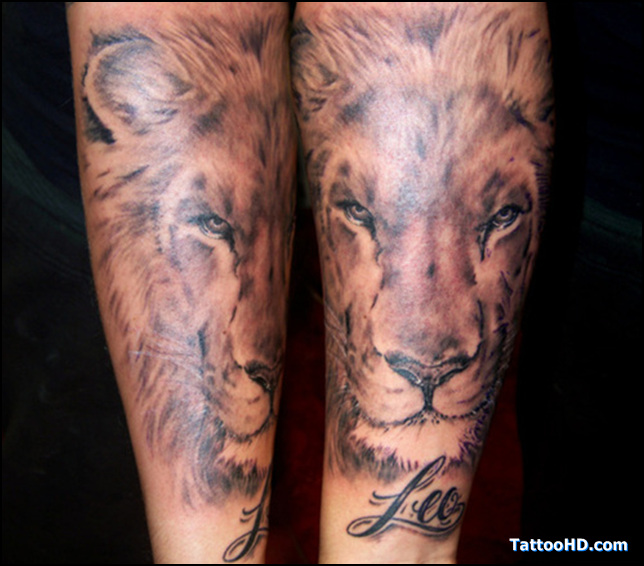 a lion tattoo