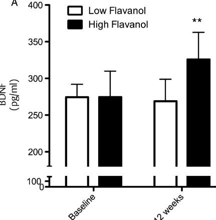 フラボノイド 12週間 BDNF