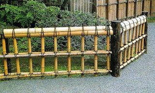 6 Manfaat Batang Pohon Bambu yang Keren dan Unik