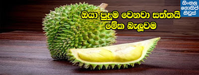 Interesting Facts About Durian