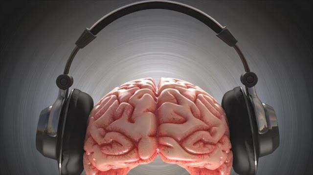 El cerebro desactiva las respuestas a sonidos que le molesta