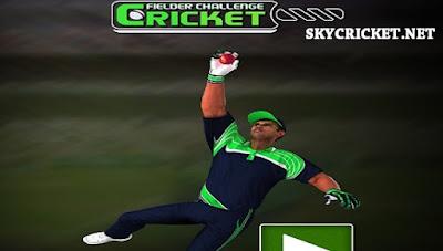 Online Cricket fielder challenge game