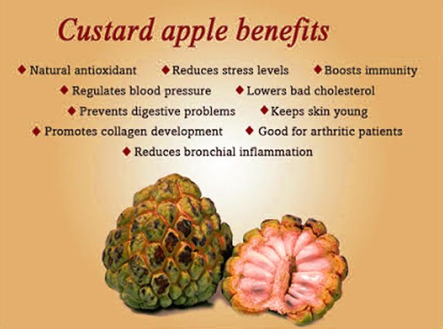 Custard-apple-benefits