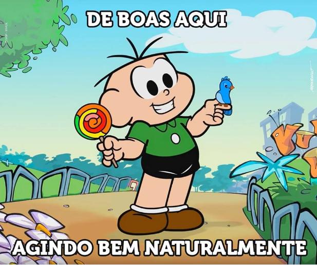 cebolinhanatural.png (617×517)