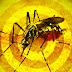 PAÍS EM ALERTA: Confirmada a primeira morte por febre amarela no RJ
