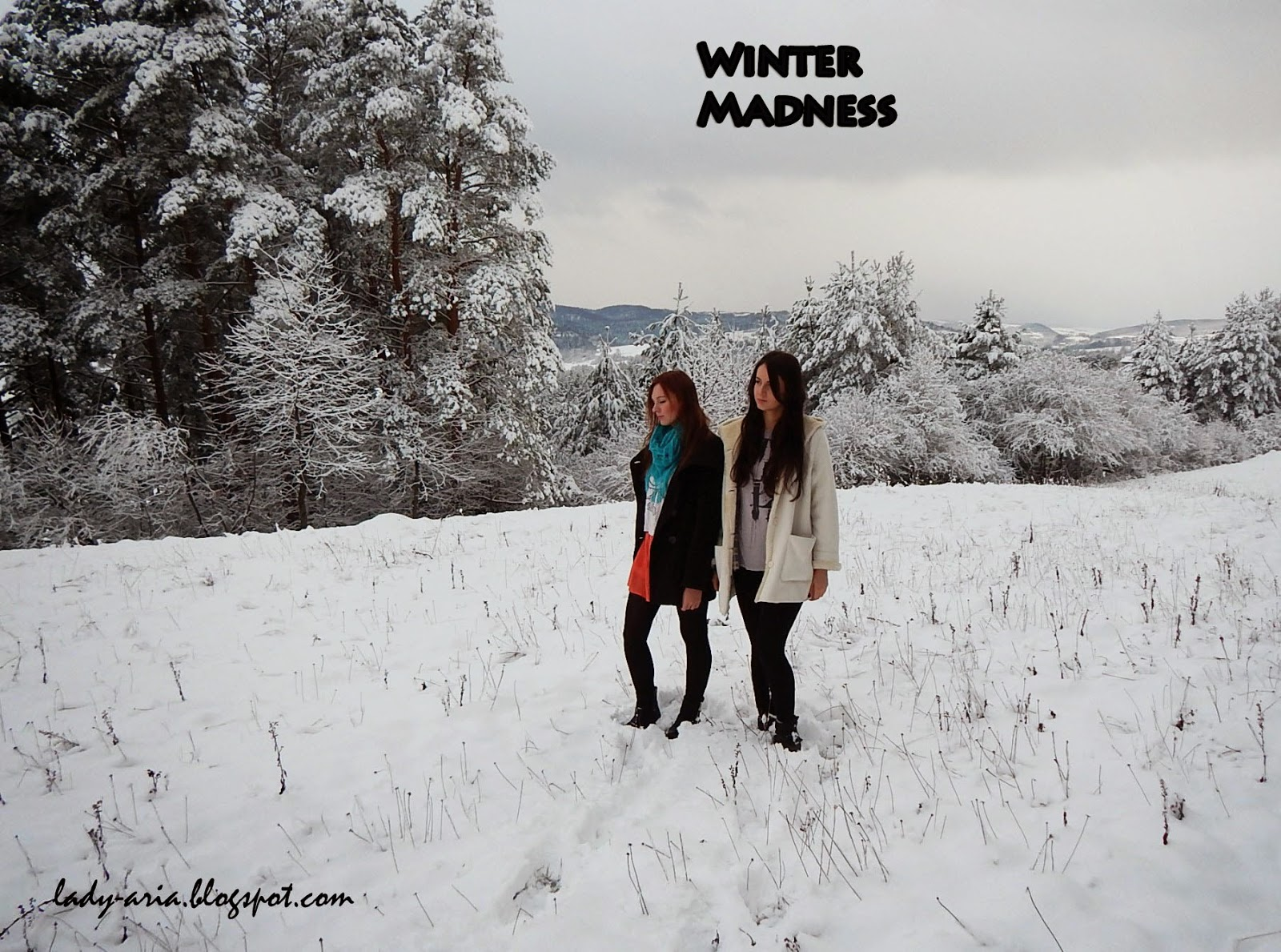 ~88 Winter Madness