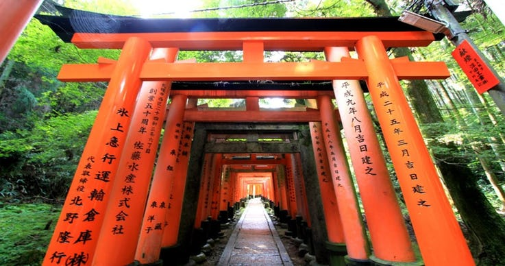 2.Torii Gates Represent The World Of Shinto Gods