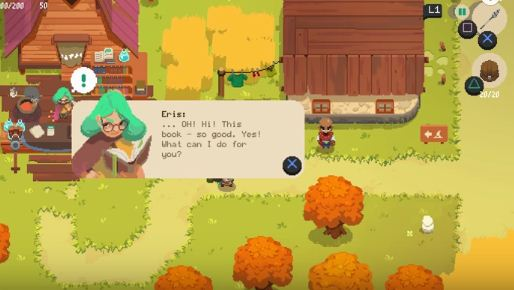 Moonlighter, Eris, Forest Dungeon