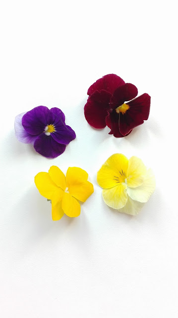 Flores comestibles - Pensamientos mini - Germinarte - Brotes, germinados, floresy miniverduras