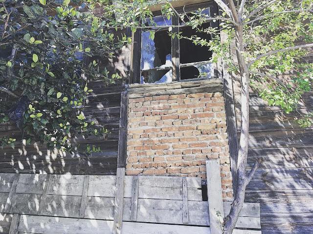 Şile Sahil Köyündeki Eski Evler Restore Edilse