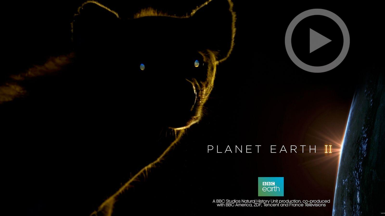 Документальный фильм BBS Планета Земля II
