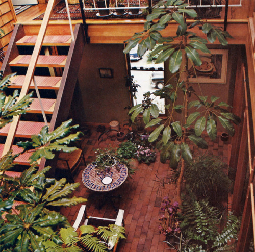 It S A Jungle In There Invasion Of The 1970s Houseplants