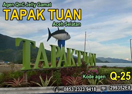 Agen QnC Jelly Gamat Tapak Tuan Aceh Selatan