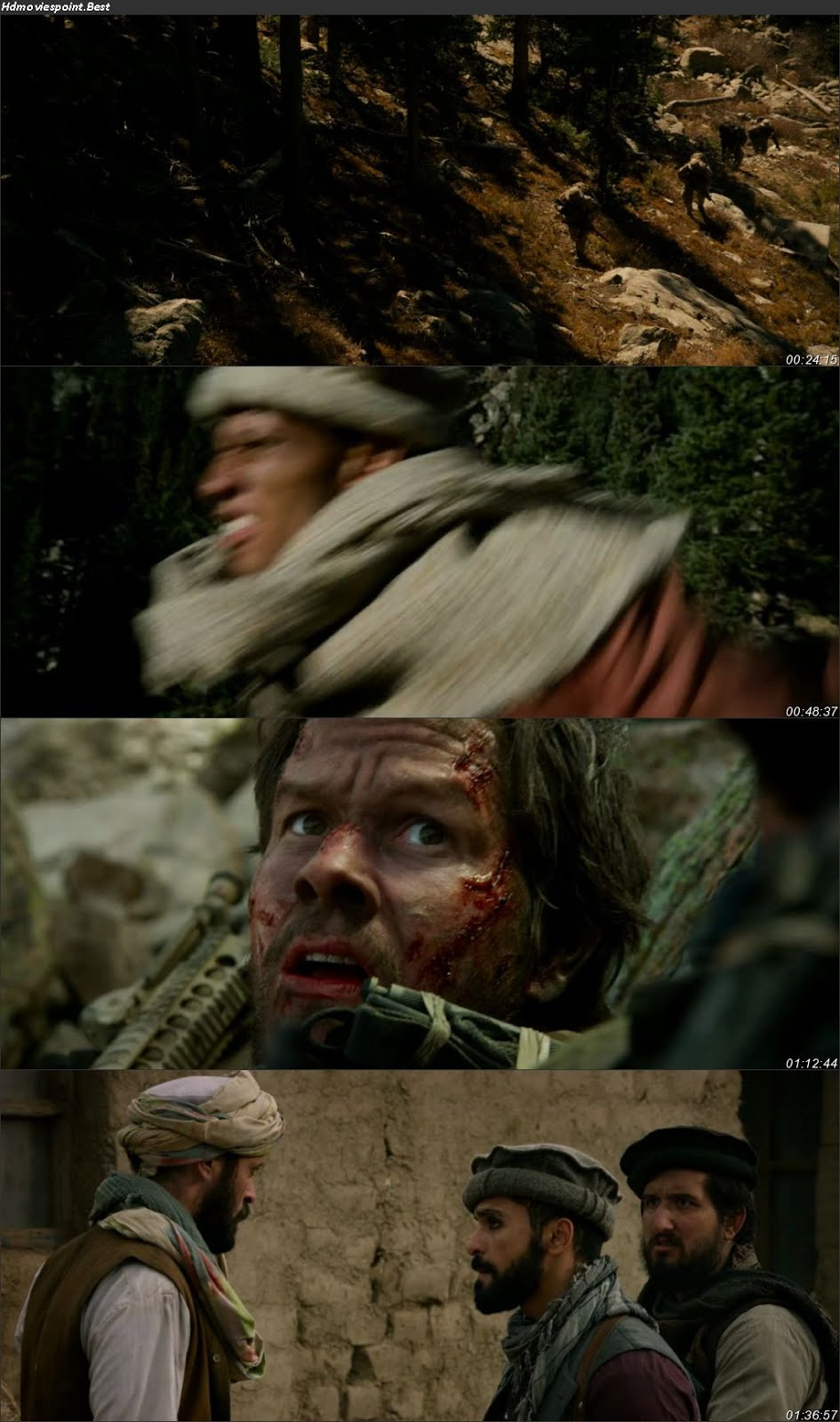 Screen Shoot of Lone Survivor 2013 Full Hindi Dual Audio Movie Download BluRay 720p