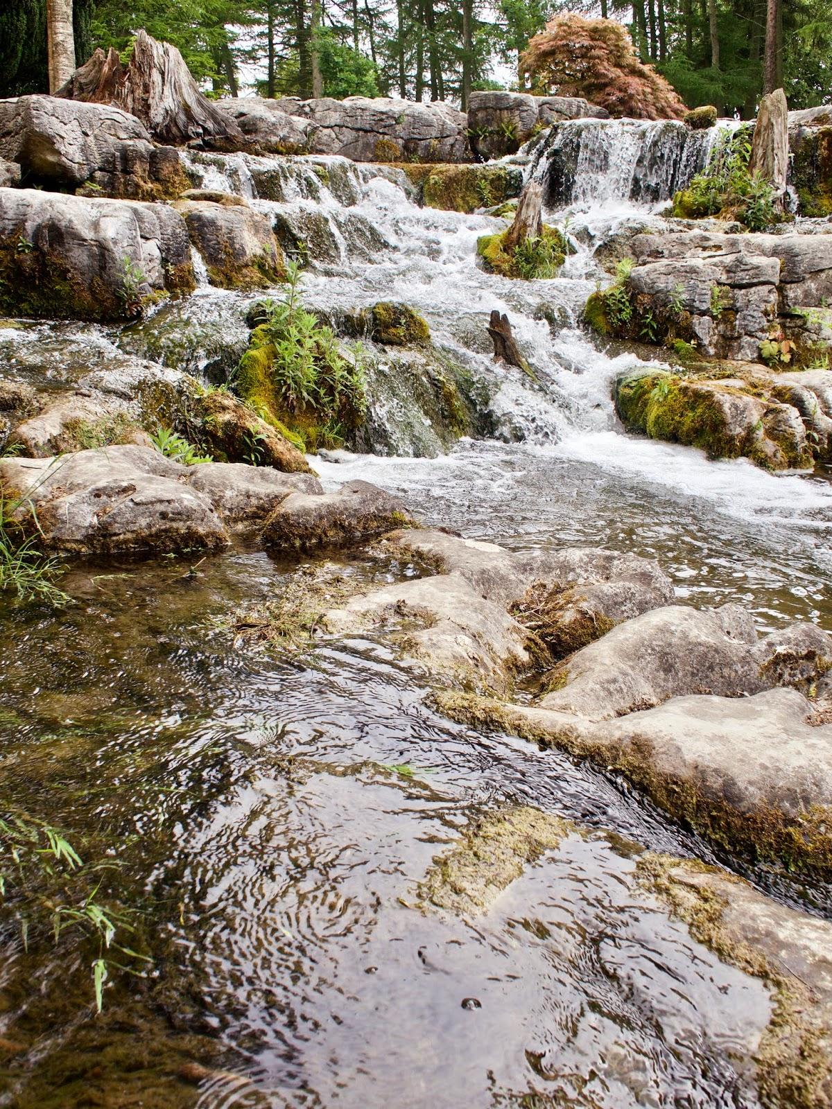 Japanese gardens Kildare
