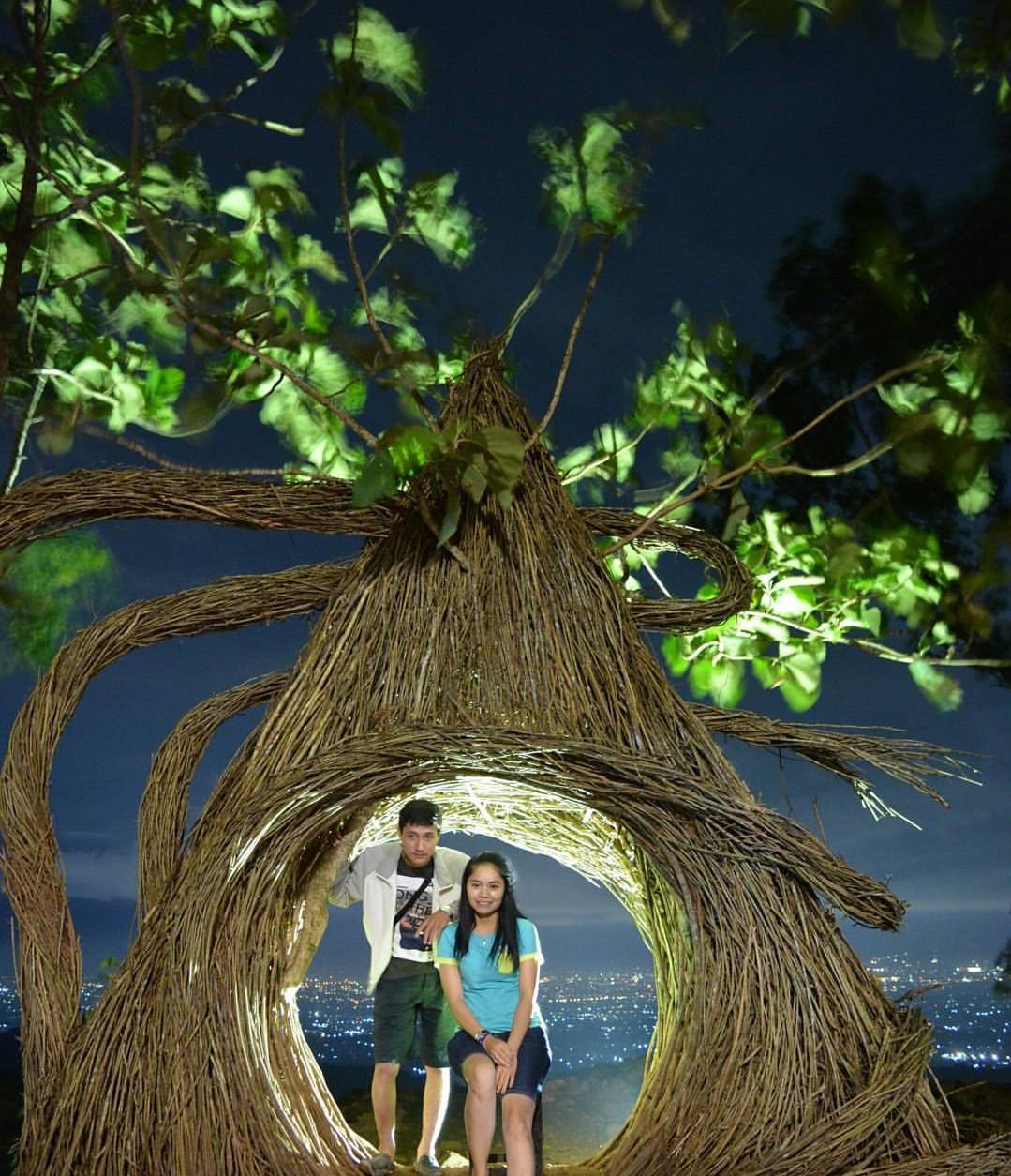 Harga Tiket Masuk Hutan Pinus Pengger Jogja Terbaru 2018
