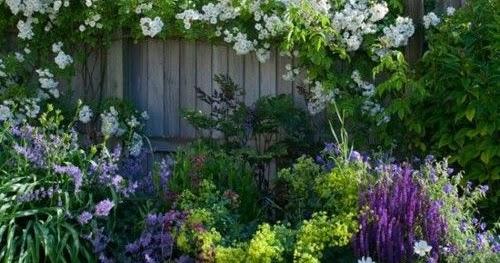 comment prendre soin de nos plantes en t. Black Bedroom Furniture Sets. Home Design Ideas