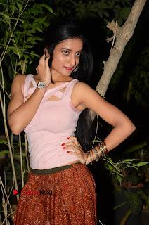 Actress Janani Pictures at Lakshmi Devi Samarpinchu Nede Chudandi Audio Launch  0045.JPG