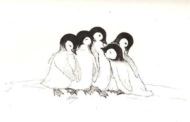 câlin de bébés pingouins - calendrier de tendresses