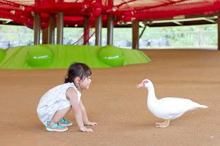 出張撮影 沖縄