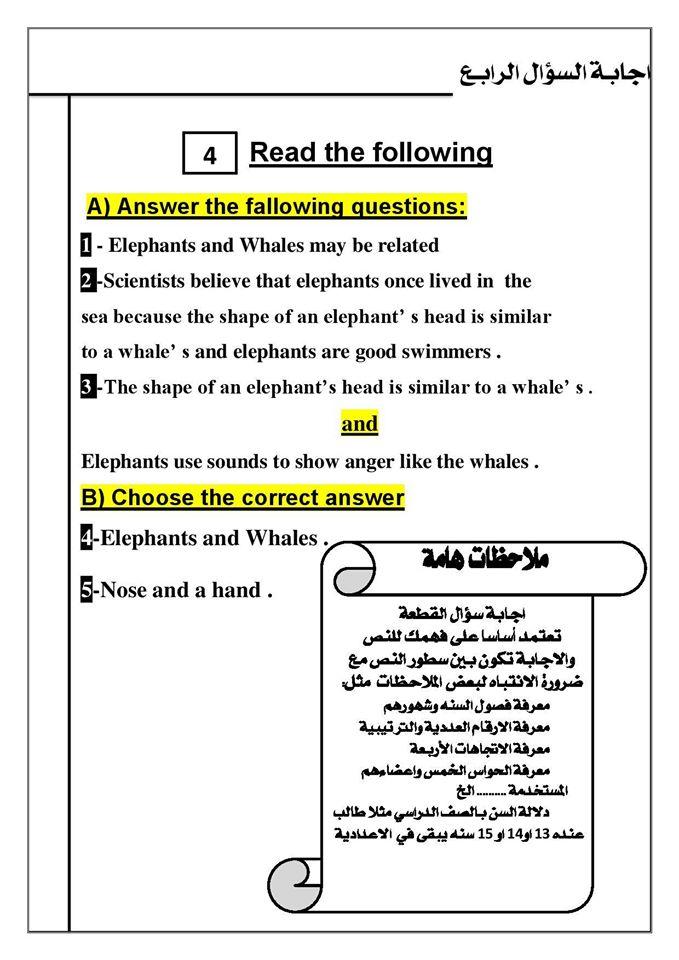 كيف تنظم ورقة اجابتك في امتحان اللغة الانجليزية ؟ ..   Mr-Saber Elboshy  5