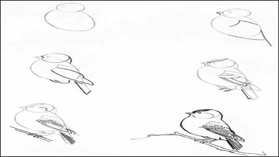 رسومات اطفال سهله رسم اطفال بسيط رسومات فنية سهلة للاطفال