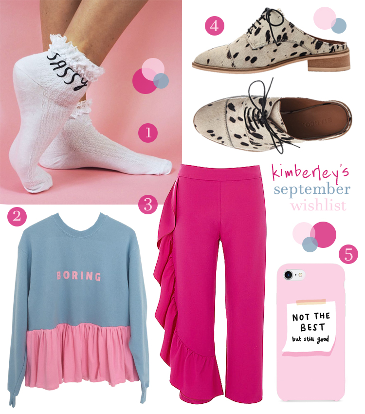 Blogger wishlist featuring Sassy Rock on Ruby socks, pink and blue Tallulahs Threads boring jumper, pink River Island trousers, dalmation print Bianco slip on shoes and pink Hello Harriet phone case