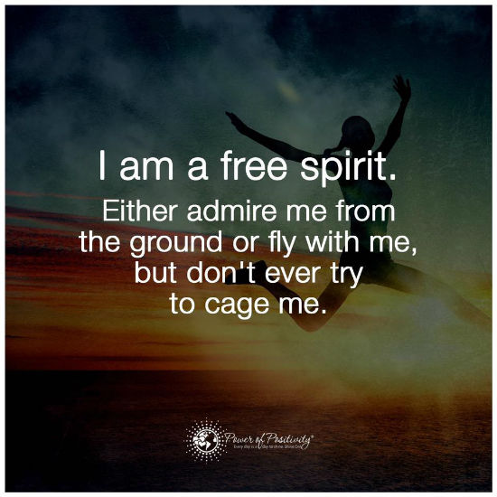I Am A Free Spirit Either Admire Me From The Ground Or Fly With Me