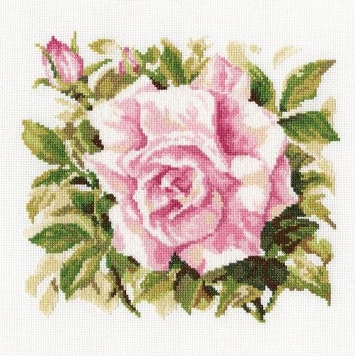 """RTO M372 """"Wild rose"""""""
