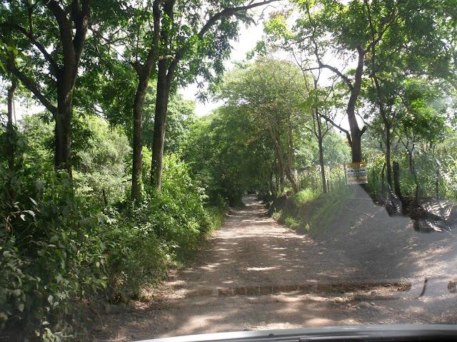 Pa' Campo Verde en Sajoma