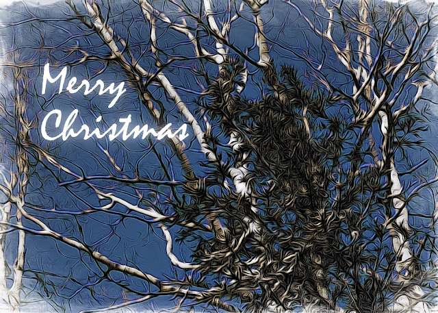 Christmas card design by Holly Massie, all rights reserved