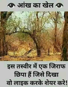 question in hindi translation