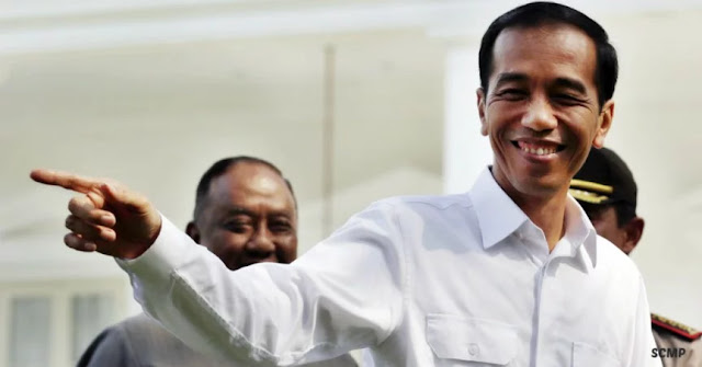 Hari Ini Presiden Jokowi Naik Kuda Sandelwood