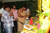 Nenu Local movie opening photos-thumbnail-15