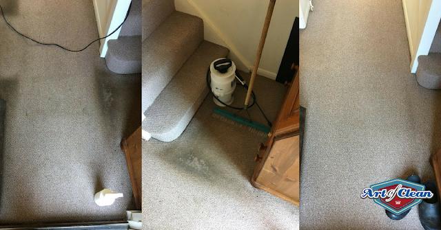 carpet cleaners cambridge