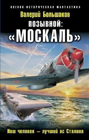 Валерий Большаков. Позывной: «Москаль»
