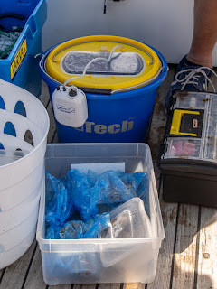 Photo of our new live bait bucket