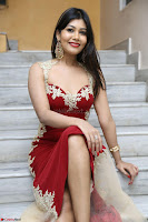 Rachana Smit in Red Deep neck Sleeveless Gown at Idem Deyyam music launch ~ Celebrities Exclusive Galleries 021.JPG