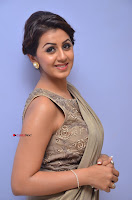 Nikki Galrani in Saree 049.JPG