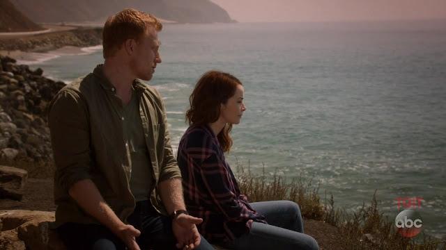 Review | Grey's Anatomy - 14x05: Danger Zone